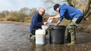 British river has worst recorded microplastic pollution in the world
