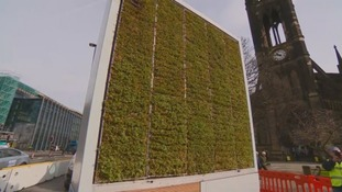 Newcastle gets country's first pollution busting 'moss tree'