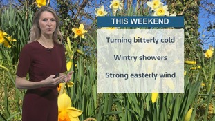Turning colder this weekend - Sophia has the latest