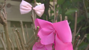 Pink bows in the trees