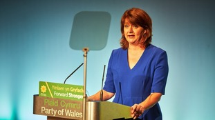 'Strength only forged from struggle' warns Plaid Cymru leader Leanne Wood