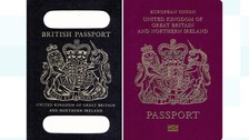 French bid to make UK passports was May's best option