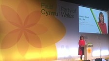 Leanne Wood tells Plaid to unite in challenge to Labour