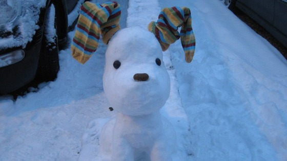 The snowdog
