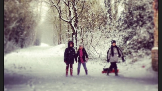 Sledging