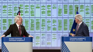 Chief negotiators David Davis and Michel Barnier highlighted the 'green lines' of agreement on the withdrawal.