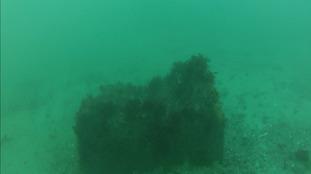World War II mine blown up in Guernsey waters