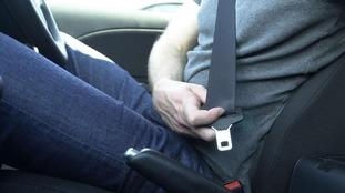 Seatbelt photo.