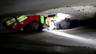 Boy, four, rescued from 20cm gap between two walls in China