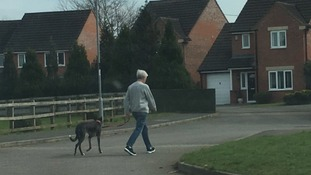 Greyhound and woman