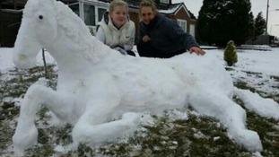 Snow horse 'Mystique'