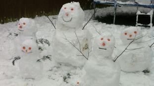 A 'snow family'