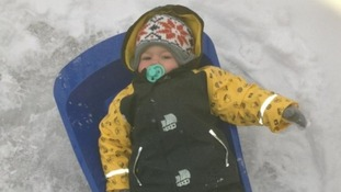 This youngster was well wrapped up and ready to sledge today.