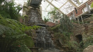 Tropical Ravine reopens following £3.8m restoration