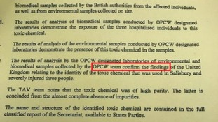 The OPCW 'confirm the findings of the United Kingdom'