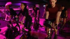 Terra Hale gym