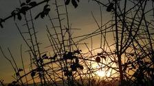 Sunset over Hertfordshire