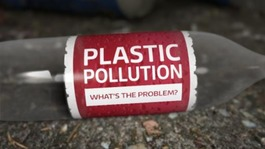 Plastic pollution: With wildlife in danger and the environment under threat, what's the answer?