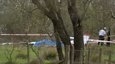 Emergency services at the scene of the light aircraft crash near Nutts Corner in Co Antrim