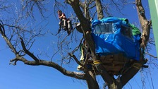A protester sits in a wheelchair suspended from a tree at the Pont Valley site