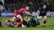 Scarlets star Gareth Davies relishing Champions Cup Challenge