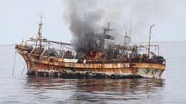 The Japanese ship was set adrift during last year&#x27;s tsunami. 