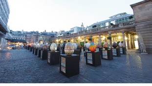 Eggs on display in Covent Garden