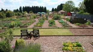 The garden was initially set up to help those with mental health problems