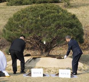They planted a pine tree together near the military demarcation line at the border village of Panmunjom