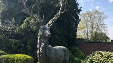 Thieves stole a seven foot tall bronze garden stag statue in Leicestershire.