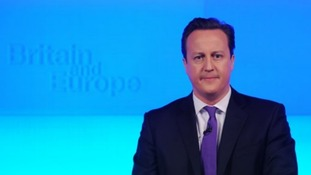 David Cameron's speech will have appealed to many eurosceptics