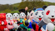 More than 50 cute panda statues have taken over the Wiltshire estate