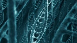 Could DNA replace USB memory sticks and hard drives in the future?