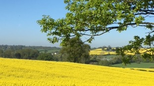 A warm and sunny Bank Holiday at Burton Latimer between Kettering and Wellingborough in Northamptonshire.