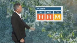 ITV Calendar Pollen Update