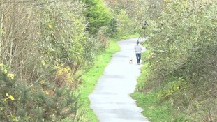 The pills were found mixed with food at Comber Greenway near Dundonald
