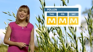 Holly's latest pollen forecast