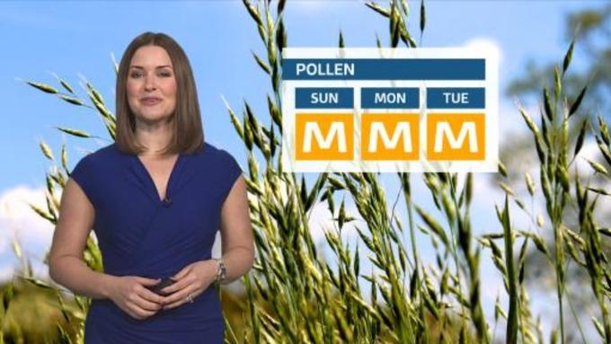 Pollen: East Midlands Weather