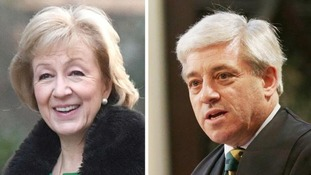 John Bercow is alleged to have called Andrea Leadsom a 'stupid woman'