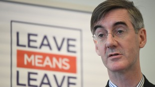 Ardent Brexiters like Jacob Rees-Mogg oppose the PM's proposals