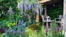 Yorkshire-themed garden wins gold medal at Chelsea Flower Show