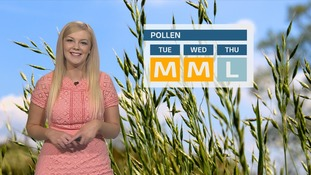 Pollen count: Staying moderate before dropping down to low on Thursday
