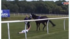 TV presenter tackles runaway racehorse at Chepstow