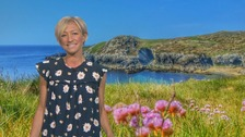 Wales Weather: Another glorious day!