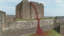 5,500 poppies cascade down Carlisle Castle