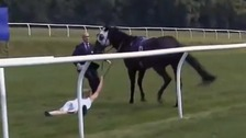 TV presenter tackles runaway racehorse