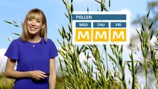 The latest pollen forecast.