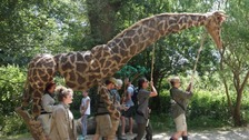 Chester Zoo prepares for gardens and science festival