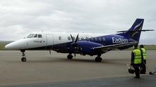 Eastern plane