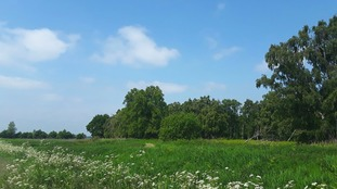 Blue sky at The Great Fen, Holme in Cambridgeshire
